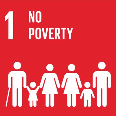 SDG1 icon